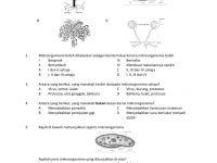 Latihan Sains Tahun 3 Menarik soalan Latihan Unit 1 Mikroorganisma