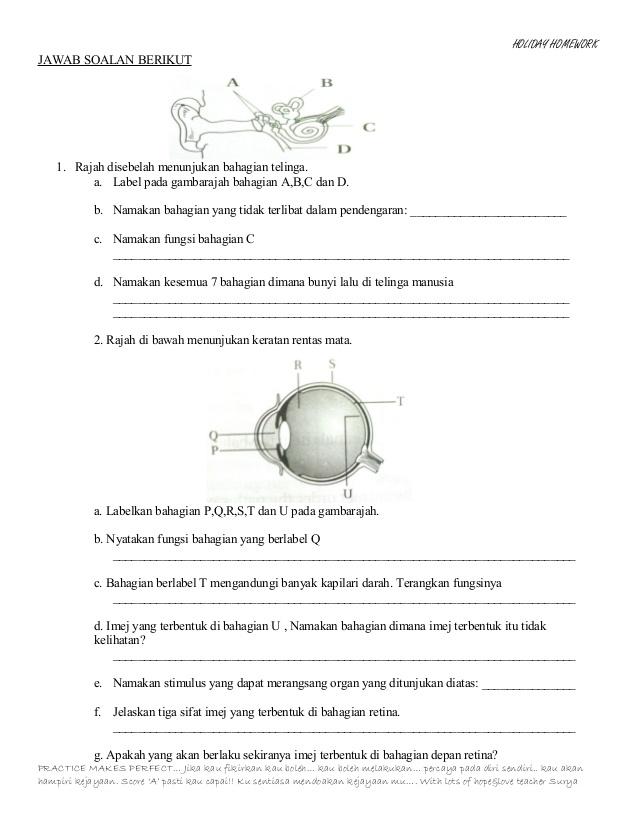 Latihan Sains Tingkatan 2 Berguna Latihan Pengukuhan Sains Ting 2