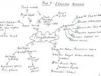 Nota Biologi Tingkatan 4 Yang Power Bijak Tekun Nota Kreatif Biologi Tingkatan 4 Bab 9