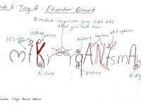 Nota Biologi Tingkatan 4 Yang Sangat Bernilai Bijak Tekun Nota Kreatif Biologi Tingkatan 4 Bab 8