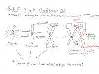 Nota Biologi Tingkatan 4 Yang Sangat Hebat Bijak Tekun Nota Kreatif Biologi Tingkatan 4 Bab 5