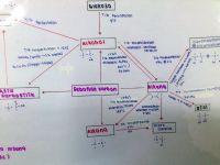 Nota Kimia Spm Yang Hebat Cikgu Nurul Nota Ringkas Sebatian Karbon