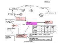 Nota Kimia Spm Yang Sangat Meletup Nota Express Kimia Spm 2 Peta Minda Struc Of atom atomic Struc