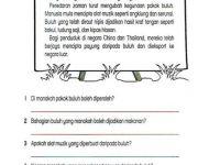 Nota Matematik Tahun 2 Mind-blowing Lembaran Kerja Bahasa Melayu Tahun 2 Adib Pinterest Education