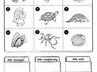 Nota Sains Tahun 1 Yang Berguna Latihan Haiwan Sains Tahun 1 Yahoo Image Search Results Sains