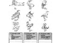 Nota Sains Tahun 1 Yang Penting Latihan Haiwan Sains Tahun 1 Yahoo Image Search Results Sains