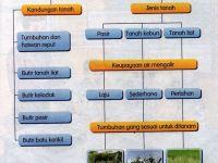 Nota Sains Tahun 3 Yang Sangat Bernilai Nota Sains Tahun 3 Unit 7 Tanah Chang Tun Kuet