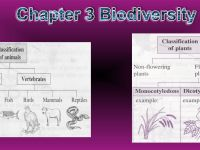Nota Sains Tingkatan 2 Yang Baik Bab 3 Sains Tingkatan 2