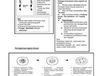 Nota Sains Tingkatan 4 Yang Power Sains Tingkatan 4 Bab 3 Variasi Dan Keturunan by Nfshapri Flipsnack