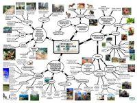 Nota Sains Upsr Yang Sangat Terhebat Pecutan Upsri Nota Nota Ulangkaji Peta Minda Sains Tahun 6 Tahun 6