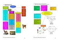 Nota Sains Upsr Yang Terhebat Nota Peta Minda Tahun 4 5 6 Sains 2010
