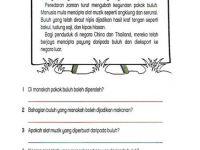 Soalan Pentaksiran Awal Tahun Bahasa Melayu Tahun 3 Bermanfaat Lembaran Kerja Bahasa Melayu Tahun 2 Adib Pinterest Education