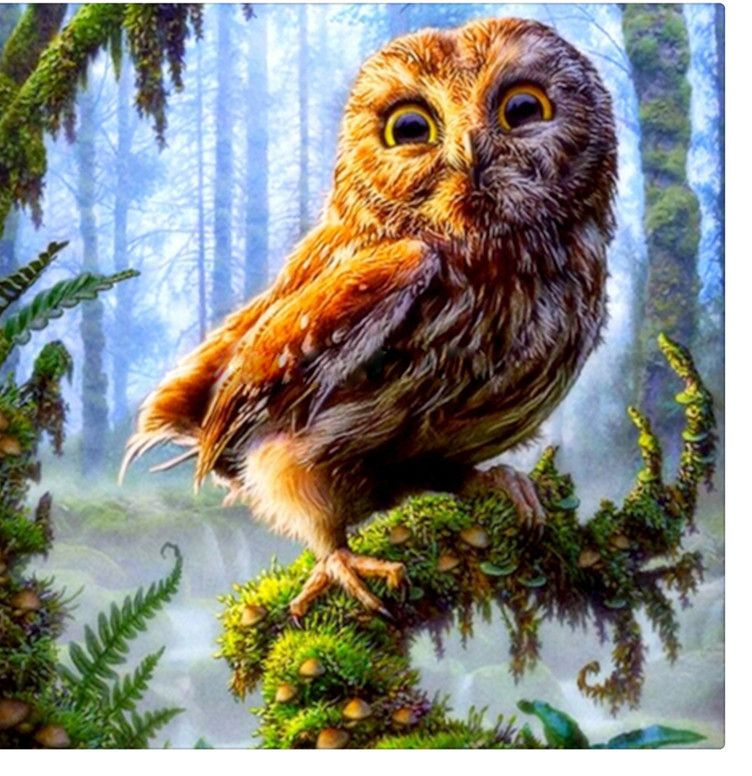 Contoh Teka Teki Burung Hantu Yang Berguna Untuk Para Guru