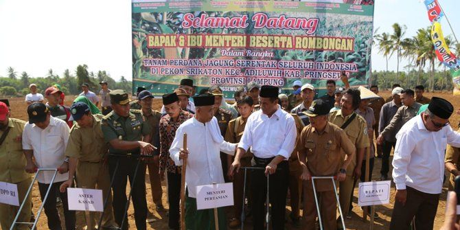 kementerian pertanian libatkan pbnu tanam jagung serentak se indonesia