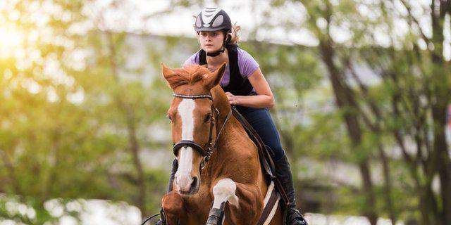 Contoh Teka Teki Kuda Yang Meletup Untuk Guru-guru