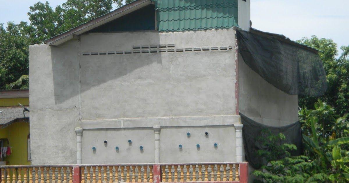 teganuku 70 peratus pengusaha rumah burung walit di terengganu berakhir kegagalan