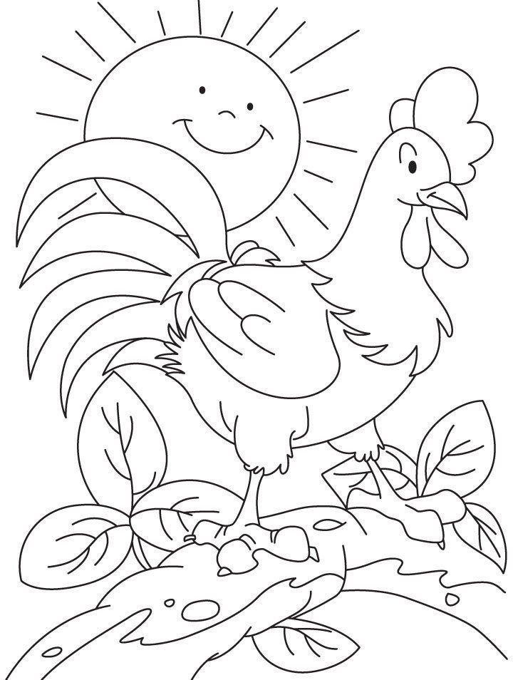 Gambar Mewarna Ayam Power Mewarnai Gambar Ayam Jago Rosmaita Pinterest Education