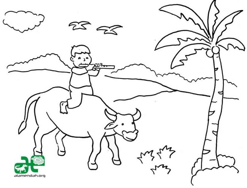 gambar mewarna suasana di kampung menaiki lembu