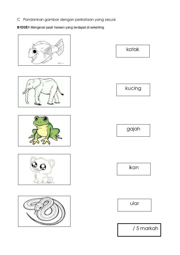 c pandankan gambar dengan perkataan yang sesuai b1d3e1 mengenal pasti haiwan yang terdapat di sekeliling