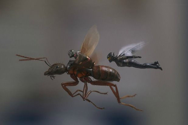 ant man and the wasp where was ant man in avengers infinity war jpg