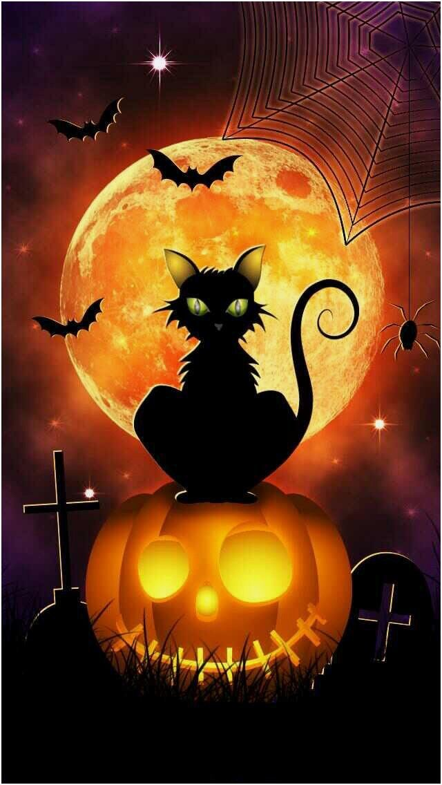 halloween from cat 7 bat source pinterest com