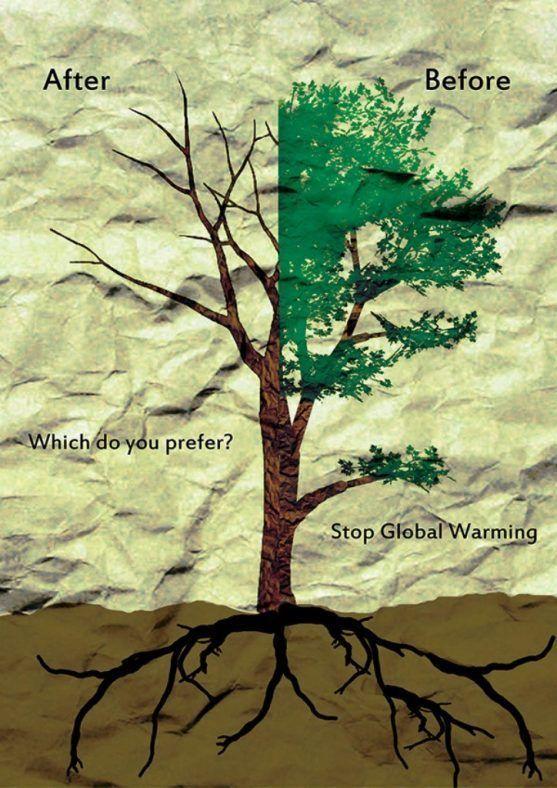 contoh poster lingkungan hidup 150 contoh gambar poster dan slogan