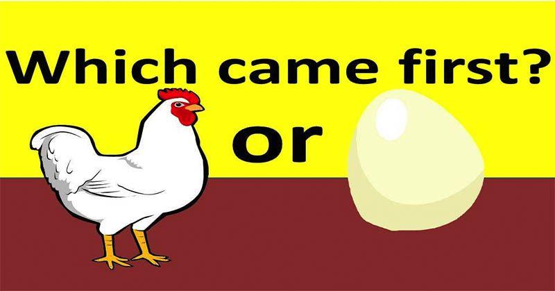 Contoh Teka Teki Ayam Yang Menarik Untuk Para Ibubapa