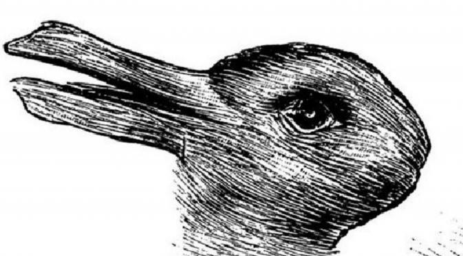 Contoh Teka Teki Gambar Ilusi Mata Yang Menarik Untuk Para Murid