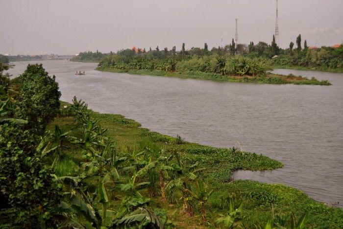 waspada makan ikan yang berasal dari sungai brantas berbahaya ini fakta temuannya