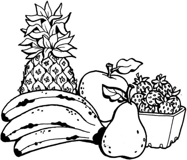 coloring now a blog archive a fruit catan cat air teknik mewarna buah buahan