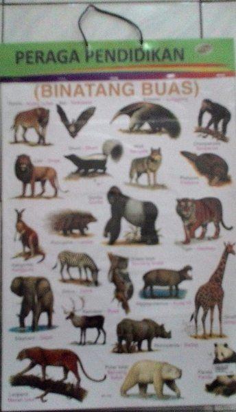 harga jual poster gantung binatang buas bukalapak com