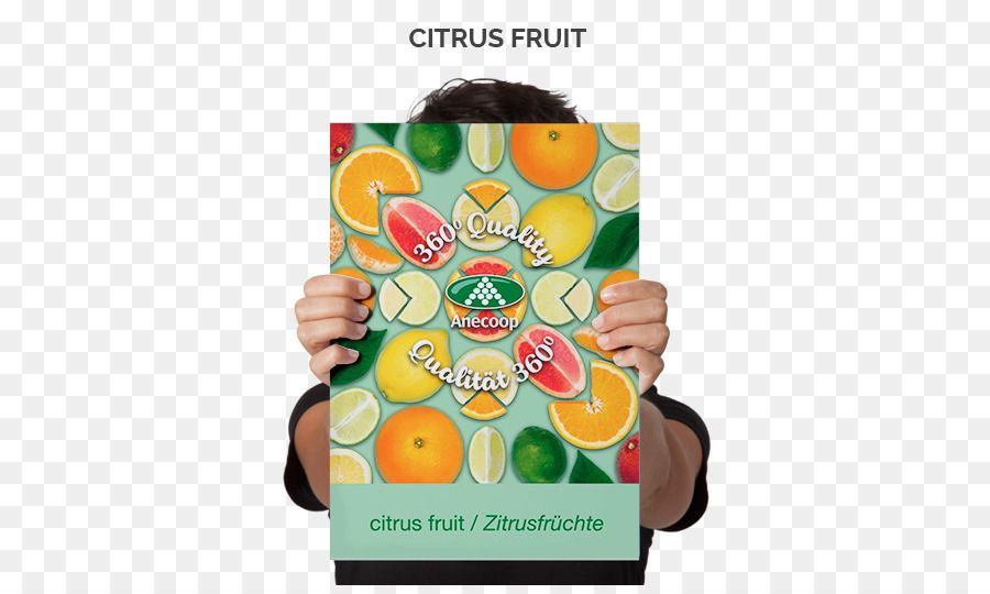 Poster Iklan Makanan Terhebat Kertas Poster Iklan Cetak Buah Jeruk Unduh Buah Makanan Kuning