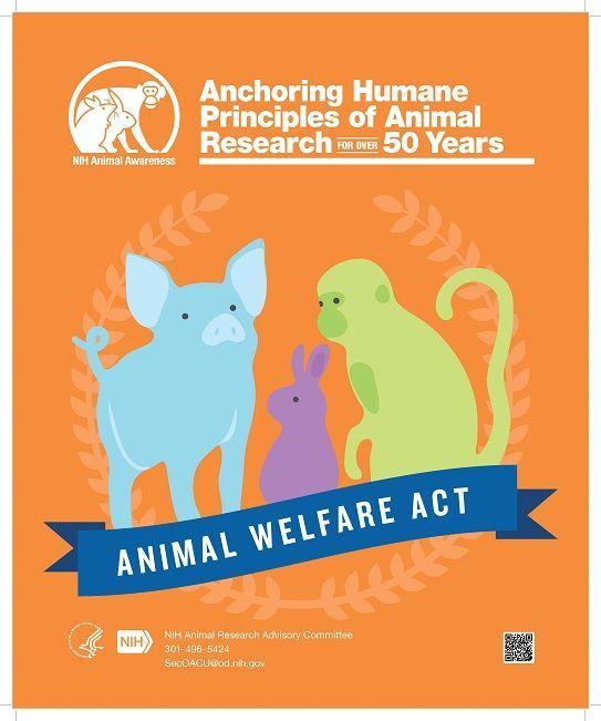 Poster Nobar Meletup Animal Awareness Posters Oacu