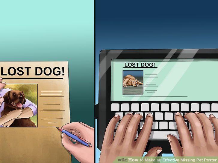 image titled make an effective missing pet poster step 1