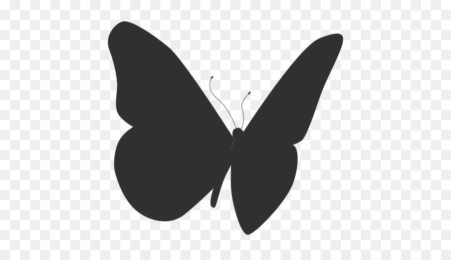 butterfly insect silhouette borboleta portable network graphics butterfly silhouette png transparent background