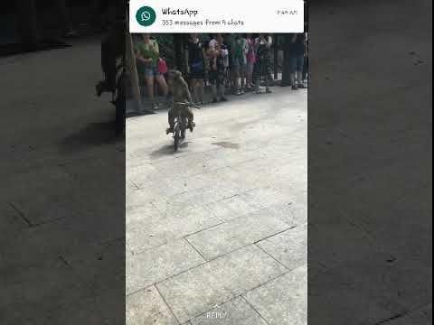 monyet naik basikal langgar pokok subscribe untuk lebih video