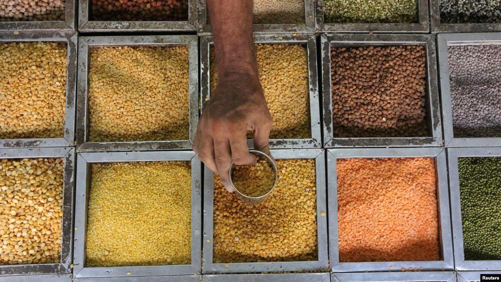 seorang pekerja mengumpulkan biji bijian lentil dari sebuah wadah di toko bahan pangan di mumbai