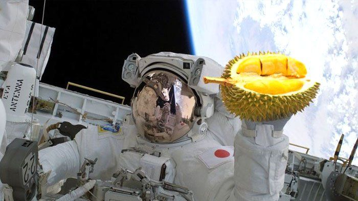 thailand akan mengirim durian monthong dan nasi ungu ke luar angkasa ini alasannya