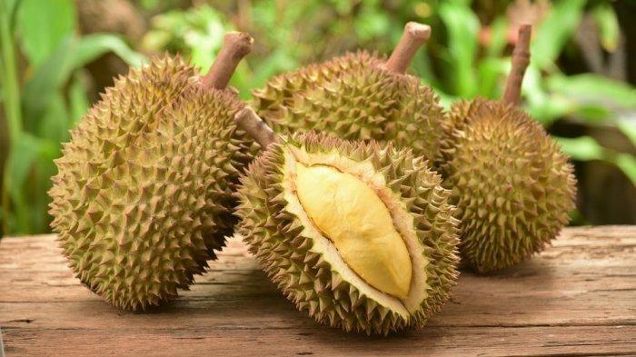 Contoh Teka Teki Durian Yang Hebat Untuk Ibubapa