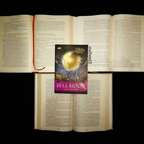 kali ini buku 2 dari a dark guardian aku langsung suka