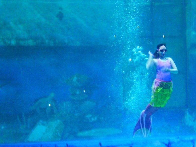 putri duyung cantik di ocean dream samudera afif detiktravel