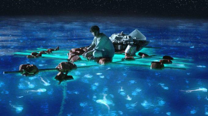 sensasi berenang bersama plankton indahnya tak berkelip mata memandang