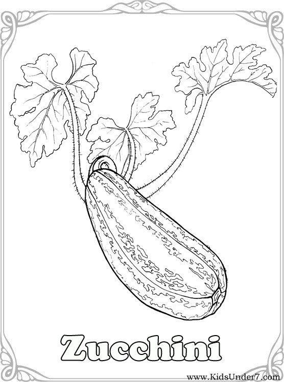 gambar mewarna zucchini