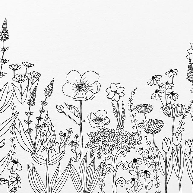 i took a commission for coloring pages of nature objects for a school this is one of the page drawing coloringpages coloringforadult flowers