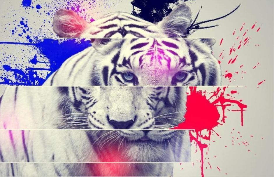 hewan harimau abu abu 5 ukuran wall decor kanvas lukisan abstrak pencetakan poster dinding gambar