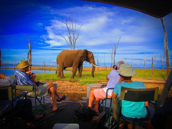 changa safari camp updated 2019 prices lodge reviews lake kariba zimbabwe tripadvisor
