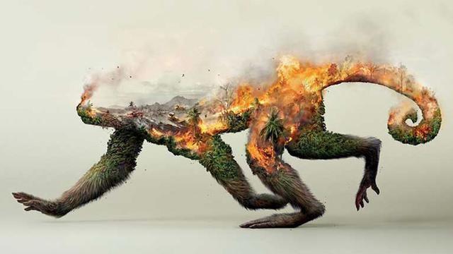 Poster Hewan Langka Power Poster Mengagumkan Ini Sentil Warga Untuk Lindungi Alam Citizen6