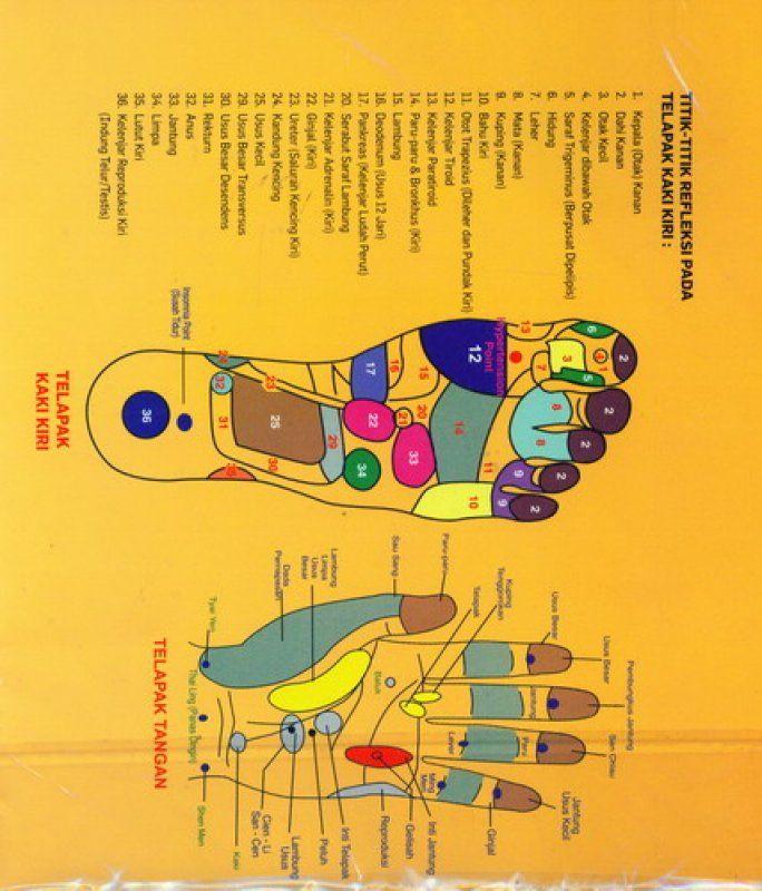 Poster Hidup Sehat Bermanfaat Terapi Refleksi solusi Sehat Seumur Hidup Poster Refleksi Stick