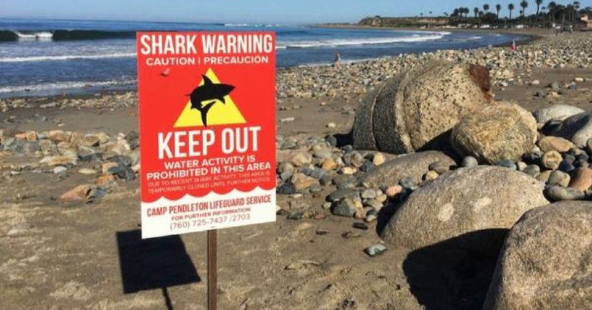 Save Water Poster Hebat Shark attack at Camp Pendleton Beach the San Diego Union Tribune